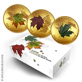 Anlagegold24 Maple Leaves of fall - Gold Set 2015, Polierte Platte