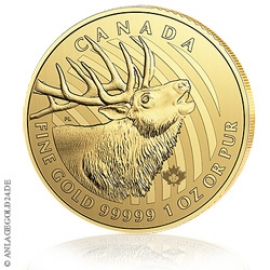 1 oz Gold - Call of the Wild Serie - Elch