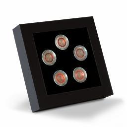 LED-Praesentationsrahmen für 5 dt. 5-Euro-Sammlermünzen in Kapseln - Leuchtturm Nr. 358252
